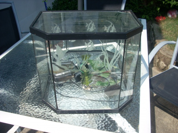 aquarium 20l filtre 20e pas sold vendu louloudu22. Black Bedroom Furniture Sets. Home Design Ideas