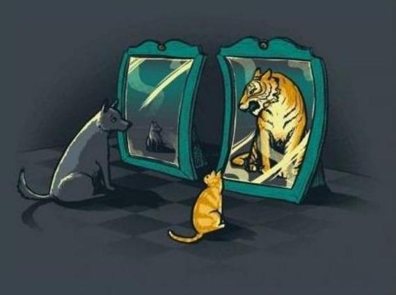 Funny Mirror