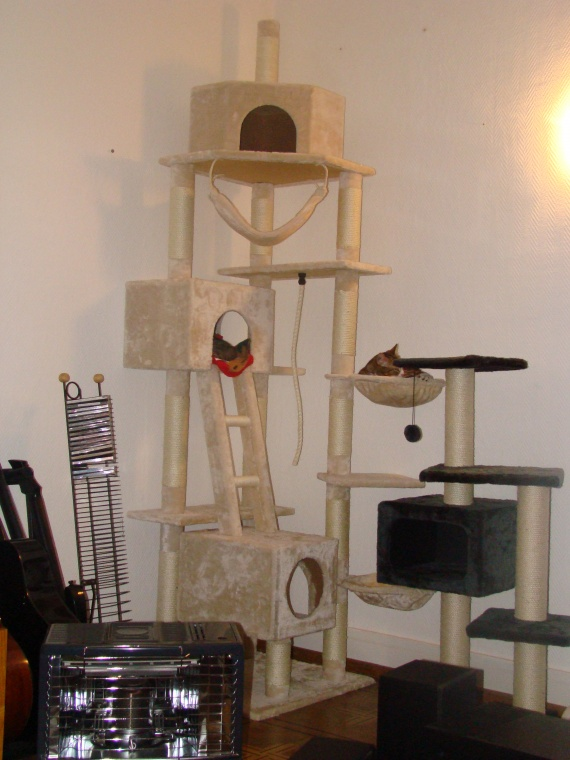 Arbre chat vendre - Fabriquer arbre a chat maison ...