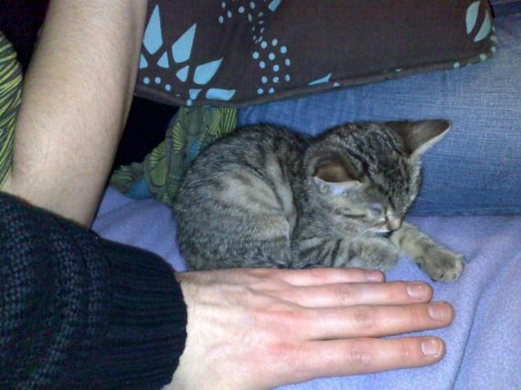 21 janvier 2011 -> soir de son arrivée
