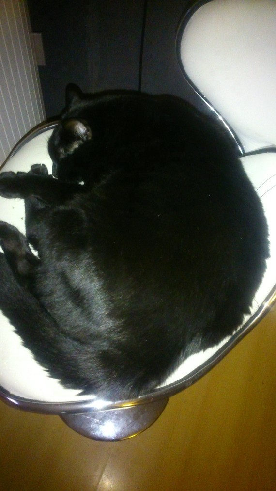 Là il dort dans son siège ^^