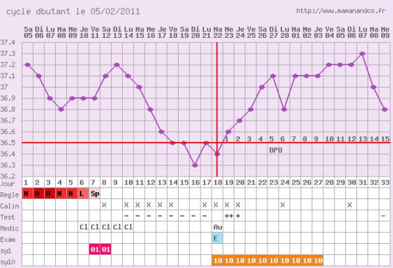 Quand survient l'ovulation sous clomid