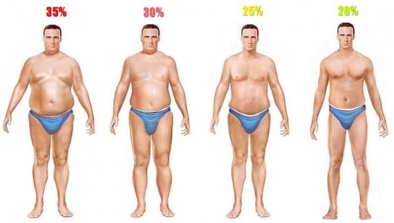 men-body-fat-high