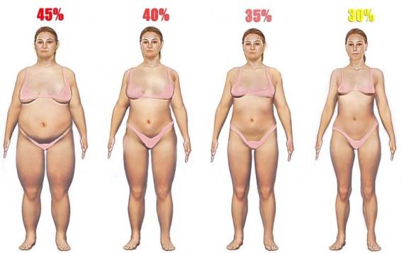women-body-fat-high
