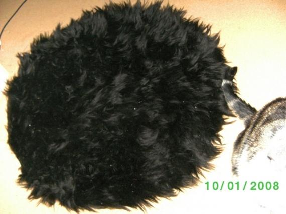 BILD0508