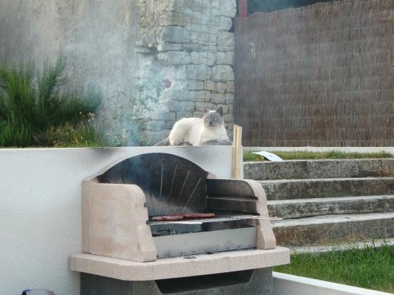 Yuba..surveille la grillade!!