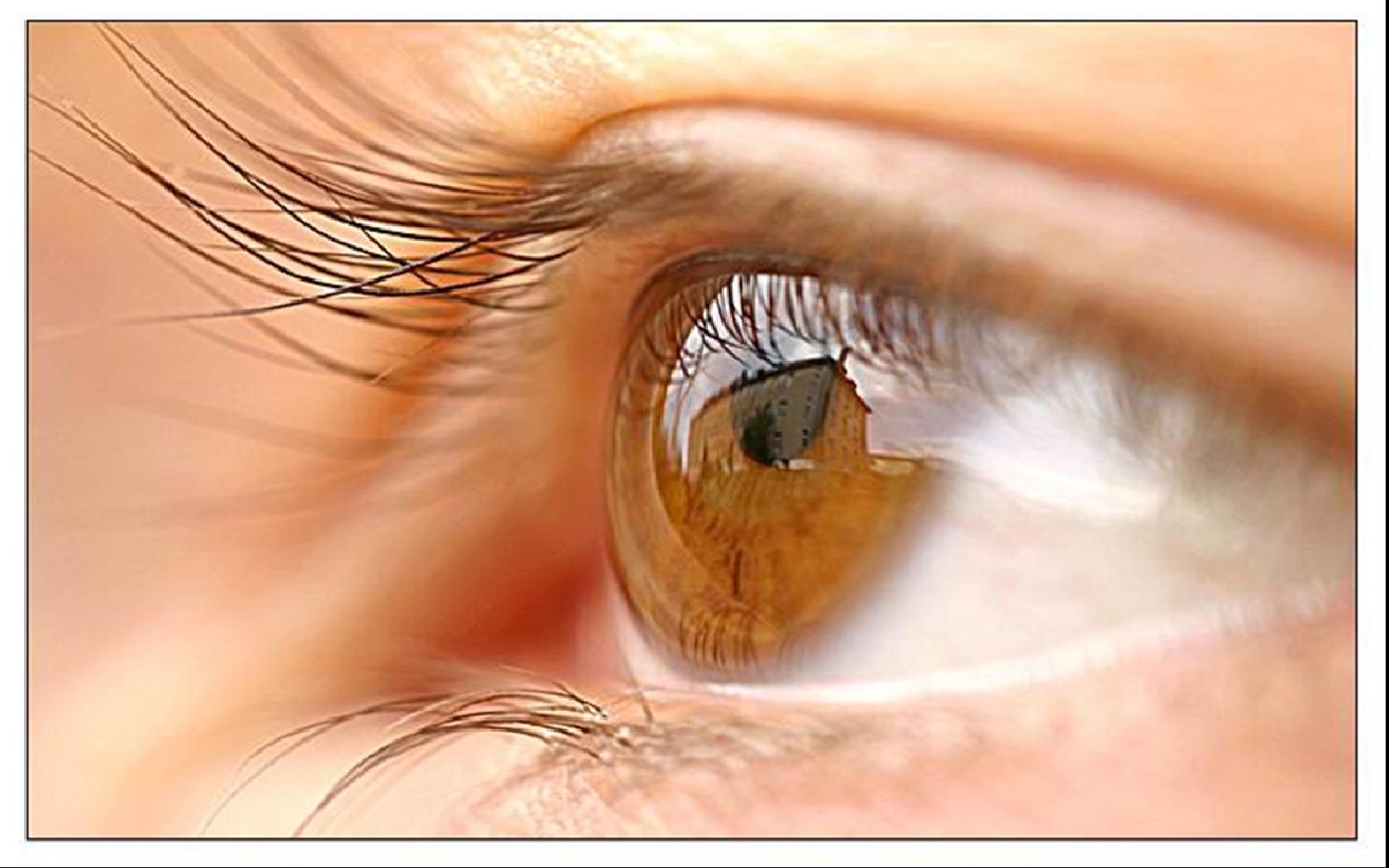 un oeil marron