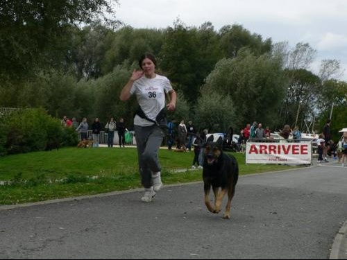 canicross armentieres 2008-230