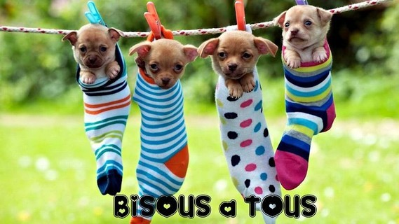 bisous_036
