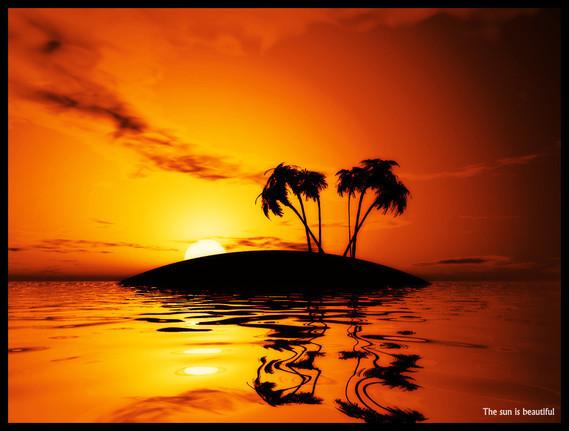 palmiers_et_coucher_de_soleil_by_francois088
