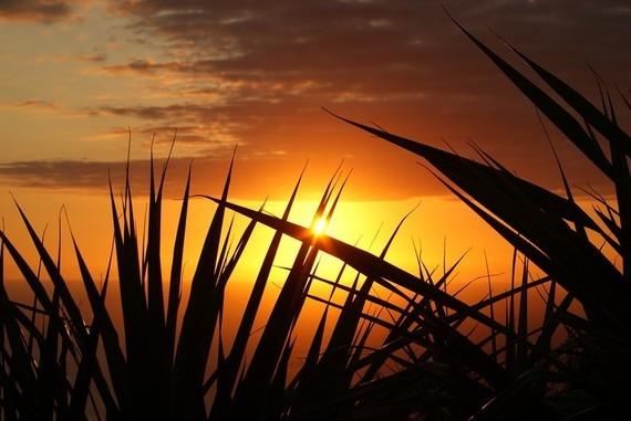 sunset-379651_960_720