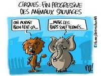 mardessin_2773_fin_des_animaux_sauvages_dans_les_cirques