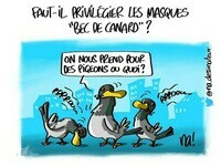 mardessin_2843_masques_bec_de_canard