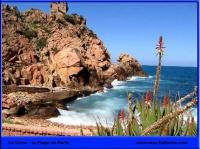 Corse-plage-de-porto