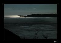 paysage11
