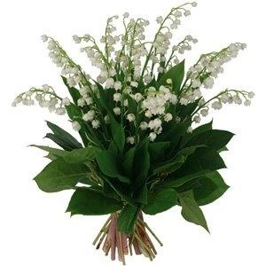 bouquet-muguet-8756464c11