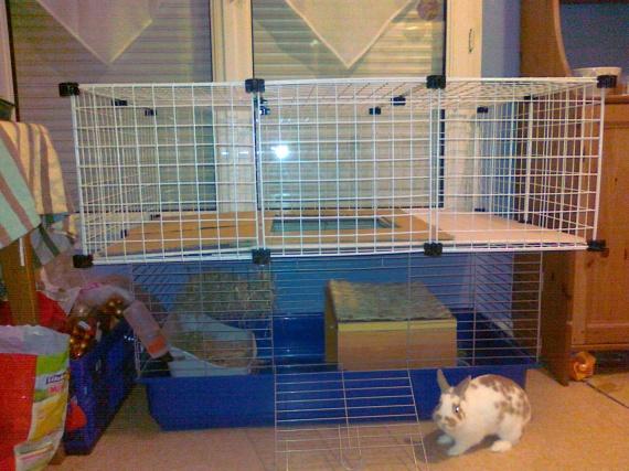 un cage spacieuse lapin pour moindre frais page 2. Black Bedroom Furniture Sets. Home Design Ideas