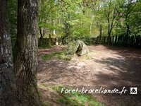 tombeau-merlin-foret-broceliande_003