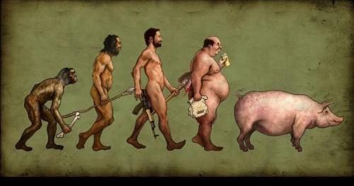 evol homme