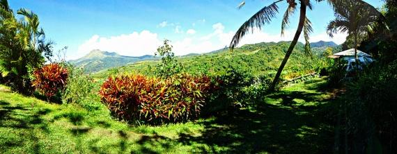 9. bungalow-nature-martinique, location-nature-martinique-domaine