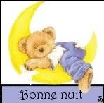 42257_613303779_bonne_nuit_H165155_L2