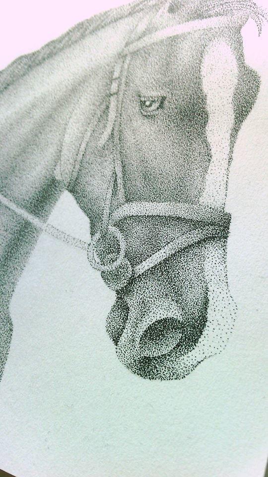Dotwork cheval