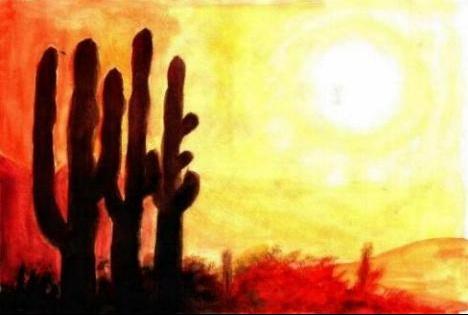 paysagecactus