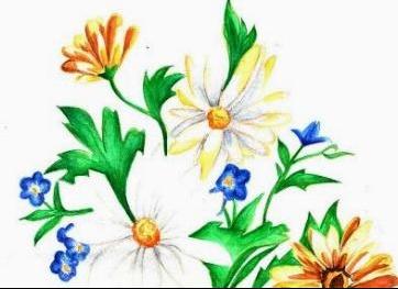 fleursdimanche2