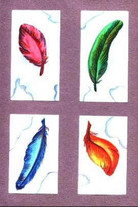 plumescouleurs