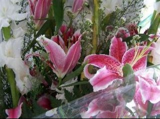 fleurs%20naissance
