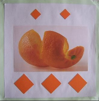 orange%20vue