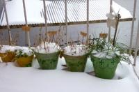 neige mars 2013-1