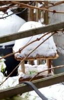 neige mars 2013-2