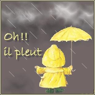 zut il pleut