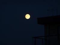 lune août 4