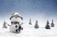 snowman_p