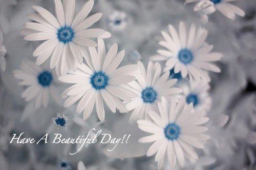 Beautifulday