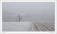 cours_paysage_neige_1