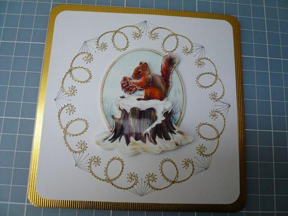 P1030068 2ème écureuil