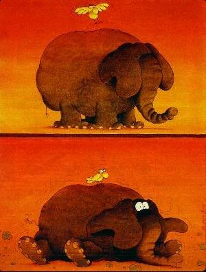 elephant_oiseau