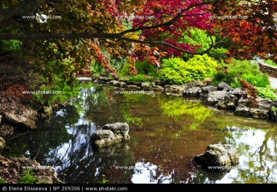 etang-de-jardin-zen-la-pierre-de-la-nature_209206
