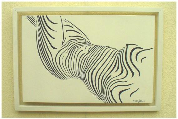 zebre-drole