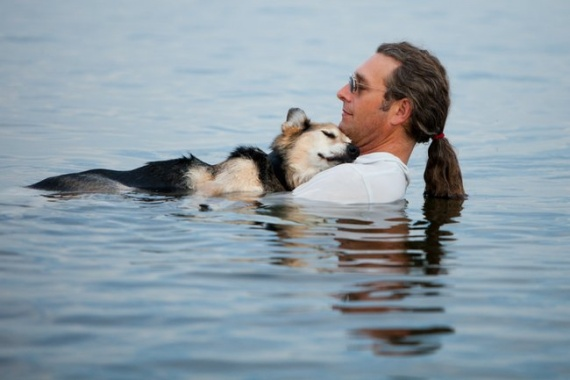 Hannah-Stonehouse-Hudson-photo-chien