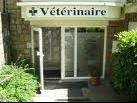 vétérinaire 2