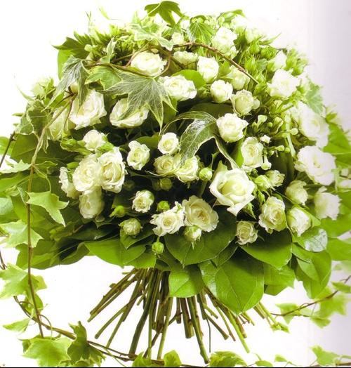 bq+rose+blanche500