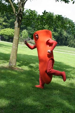 arret-sur-carotte