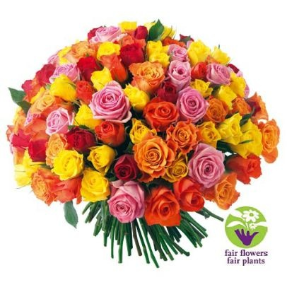 bouquet-de-roses-multicolores