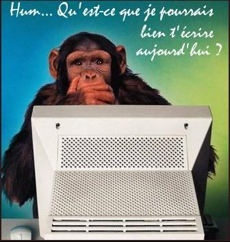 photo-humour-animaux (14)