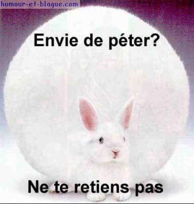 lapin_peteur