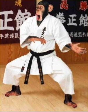 karate_chimp